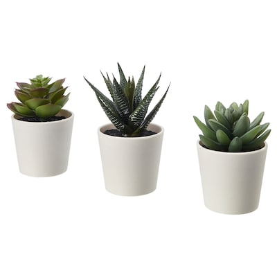 FEJKA Artificial potted plant with pot, in/outdoor Succulent, 6 cm 3 pack