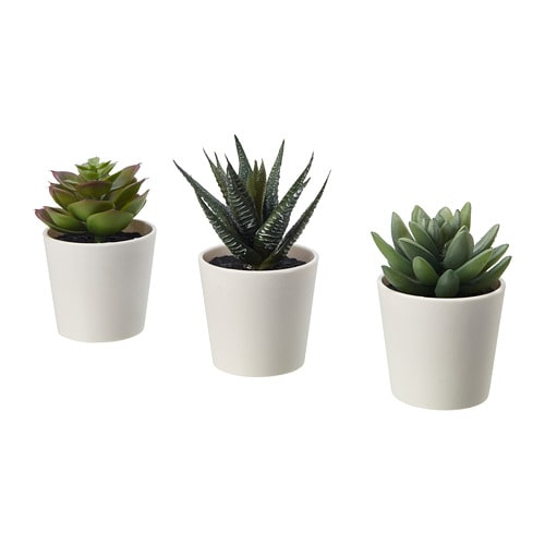 fejka artificial potted plant with pot in outdoor succulent 6 cm 3 pack ikea. Black Bedroom Furniture Sets. Home Design Ideas