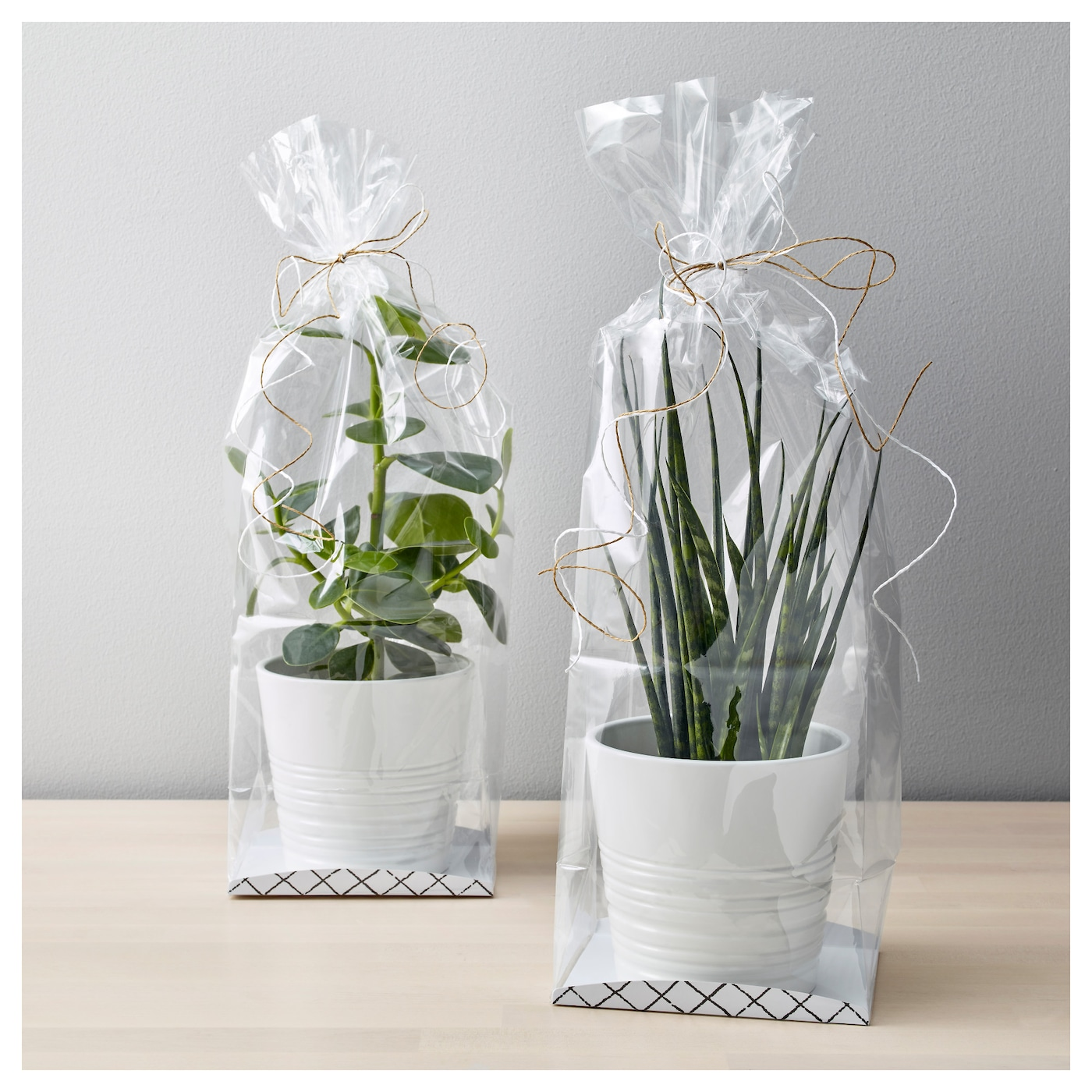 IKEA GIVANDE gift bag The gift bag is perfect if you want to bring a flower as a gift for the party.