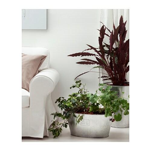 IKEA GRÄSLÖK Plant Pot The Handles Make It Easier To Move The Plant Pots.