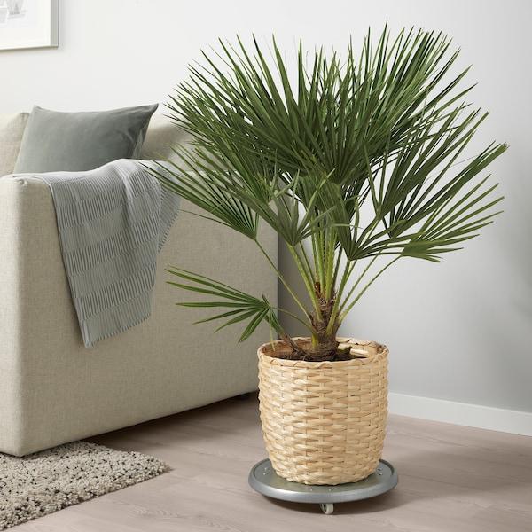 KAFFEBÖNA Plant pot, bamboo, 24 cm