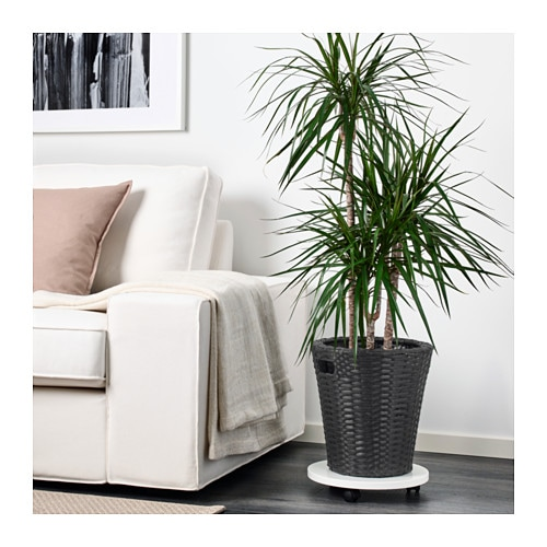 IKEA KOKBANAN plant pot Decorate your home with plants combined with a plant pot to suit your style.