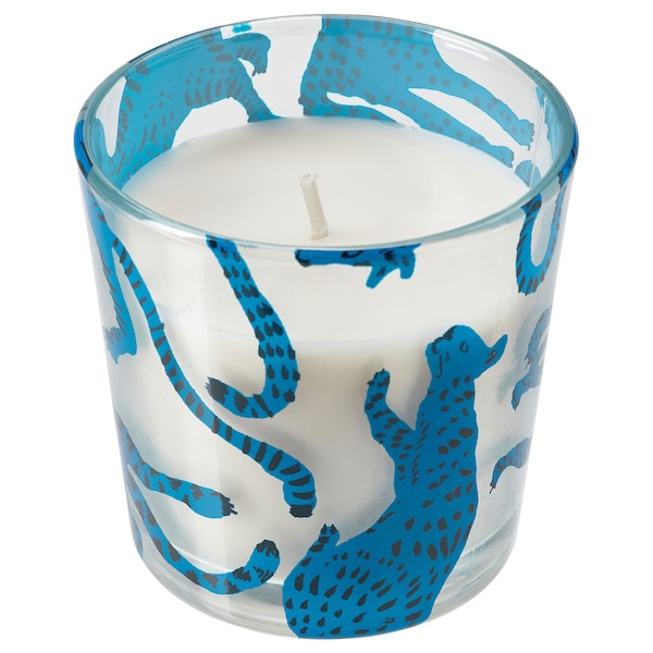 MEDKÄMPE Scented candle in glass, cat/Freshly-picked blueberries blue, 7.5 cm