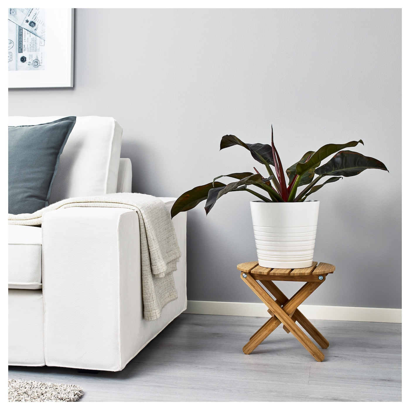 IKEA PHILODENDRON potted plant