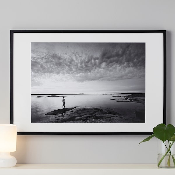 Ribba Black Frame 61x91 Cm Ikea