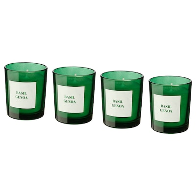 RINGLAD Scented candle in glass, Basil/green