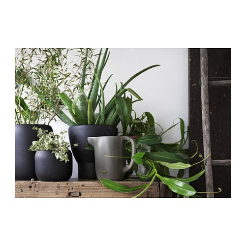 Sinnerlig plant pot assorted models black 15 cm ikea for Black planters ikea