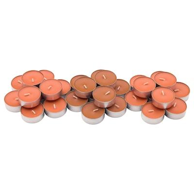 SINNLIG Scented tealight, Peach and orange/orange