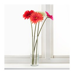 Smycka artificial flower gerbera white 50 cm ikea - Ikea fleurs artificielles ...