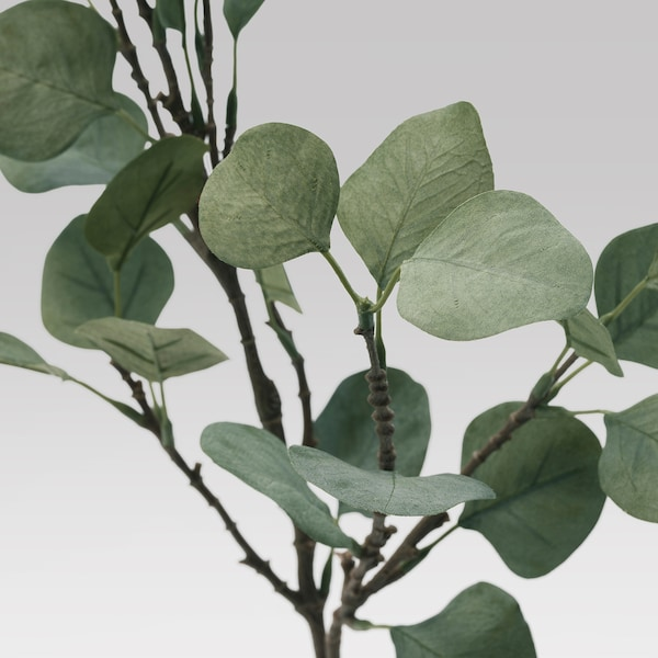 SMYCKA Artificial leaf, eucalyptus/green, 65 cm