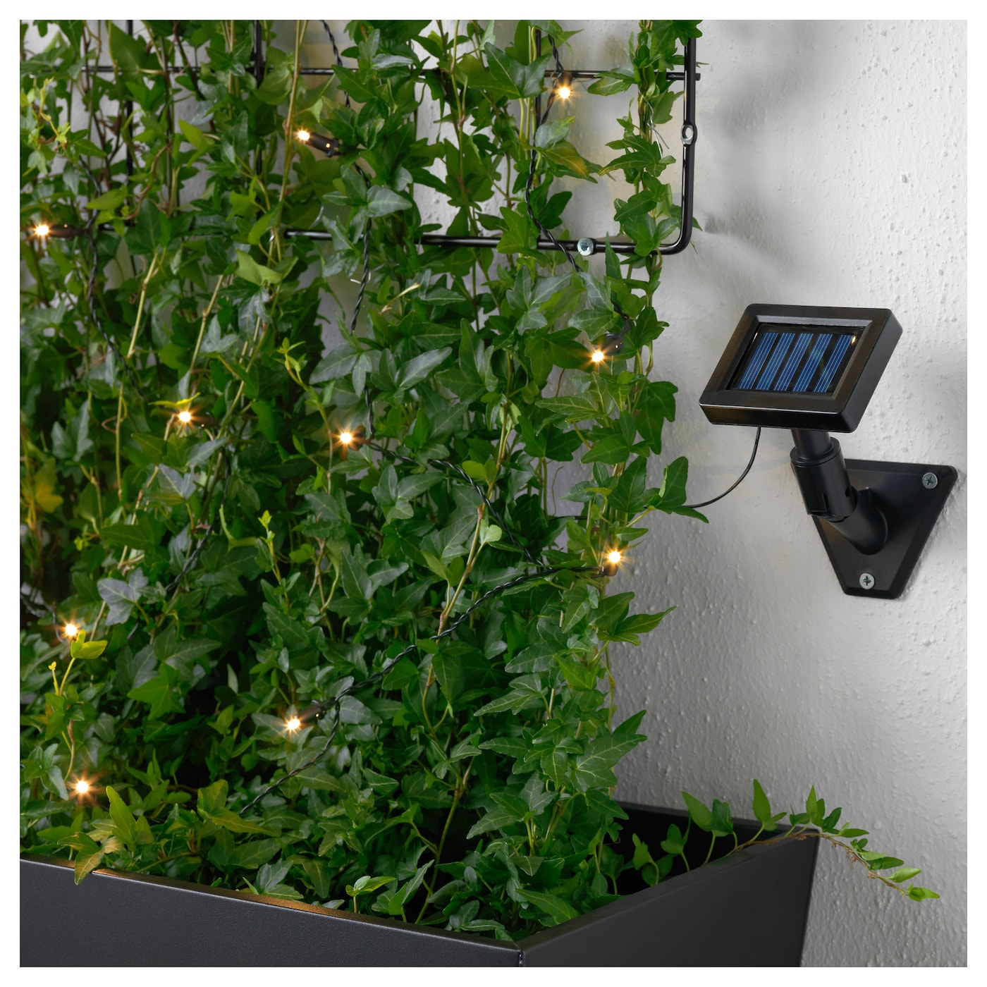 solarvet led lighting chain with 12 lights outdoor solar powered ikea. Black Bedroom Furniture Sets. Home Design Ideas