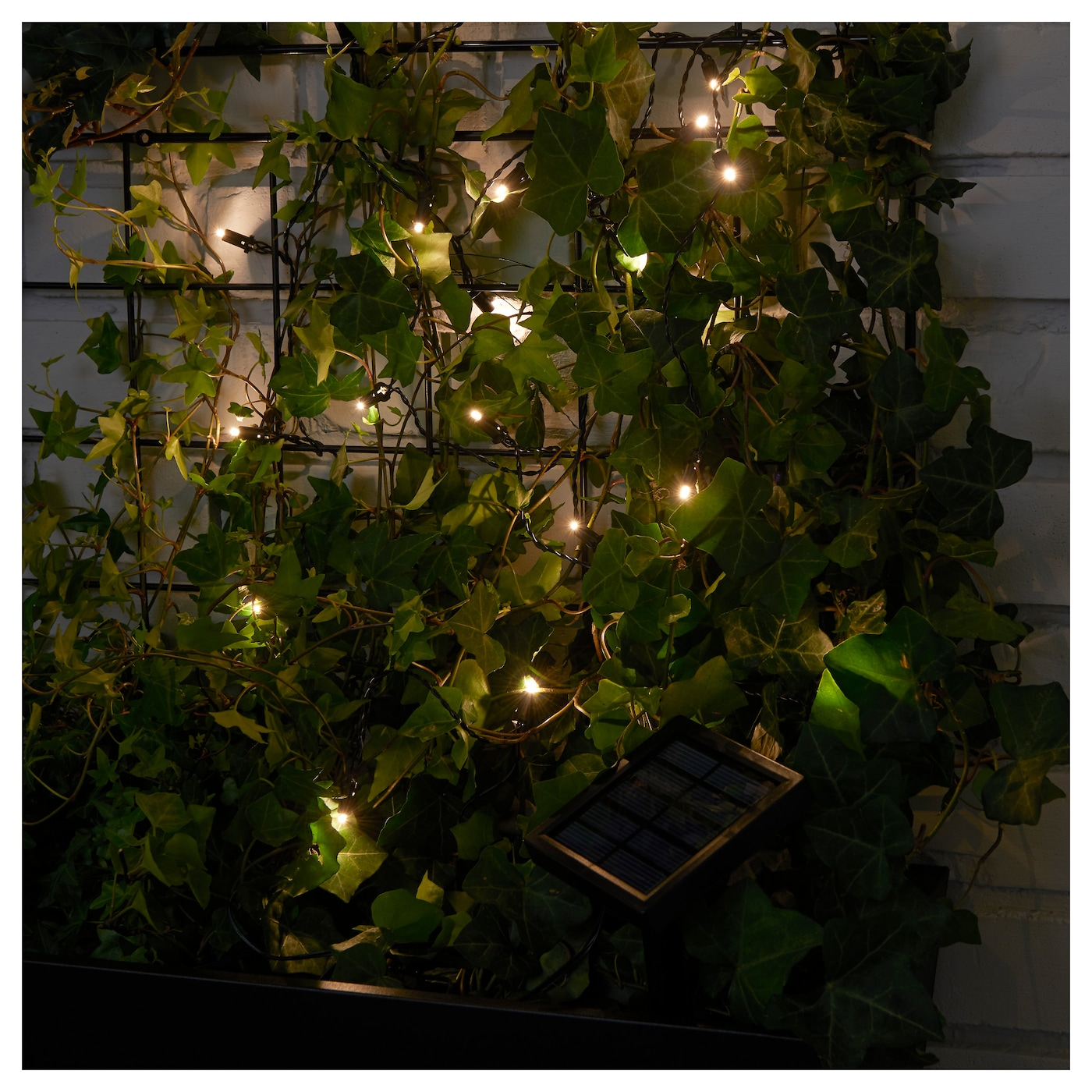 IKEA SOLARVET LED lighting chain with 24 lights Easy to use because no cables or plugs are needed.