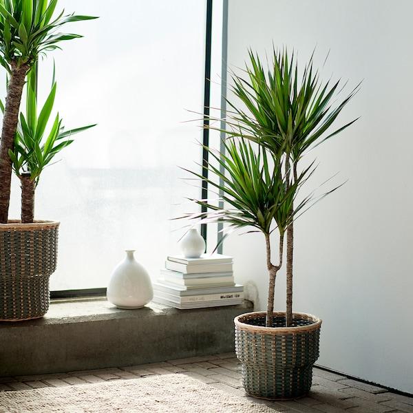 STENBÄR Plant pot, grey, 24 cm