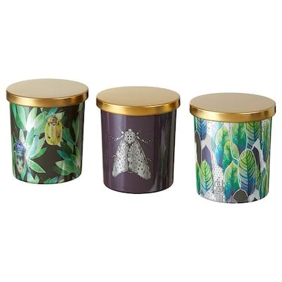 STORSTAD Scented candle in glass, multicolour/dark plum liqueur