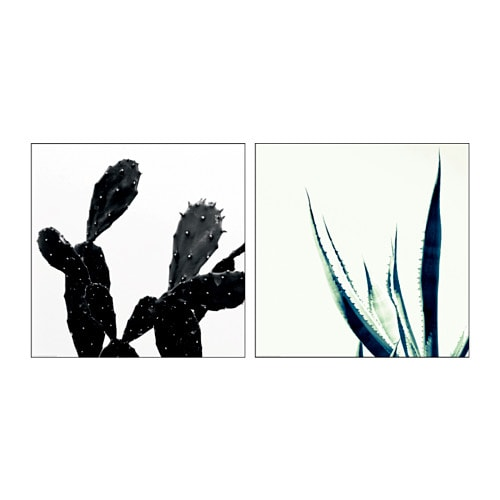 Tvilling poster set of 2 cactus 50x50 cm ikea for Poster ikea