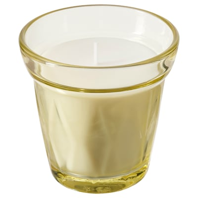 VÄLDOFT Scented candle in glass, Pantry/yellow, 8 cm