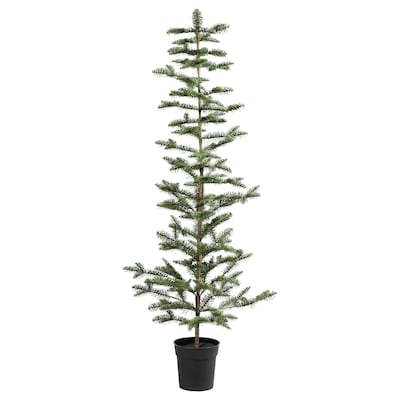 VINTER 2020 Artificial potted plant, in/outdoor/Christmas tree green, 19 cm