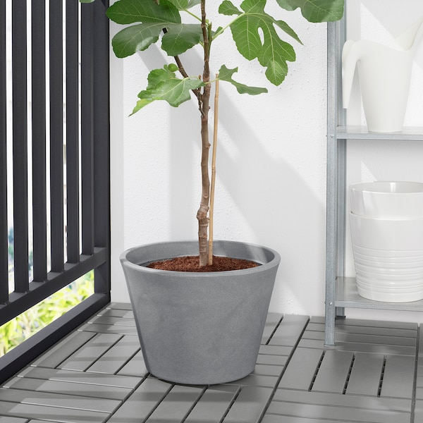 CITRUSKRYDDA Tegla za biljke, u zatvorenom/na otvorenom siva, 35 cm