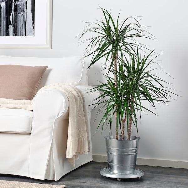 SOCKER Tegla za biljke, u zatvorenom/na otvorenom/galvanizirano, 24 cm