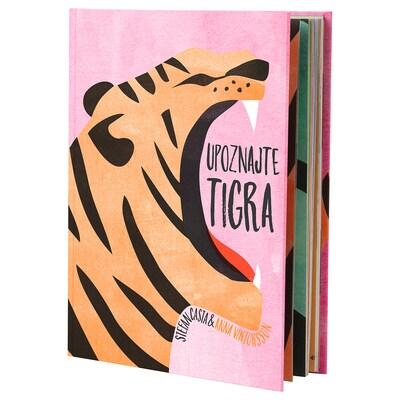 URSKOG Knjiga, Upoznajte tigra