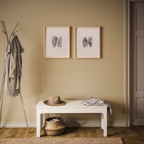 BILD Poszter, Fekete kagylók, 40x50 cm