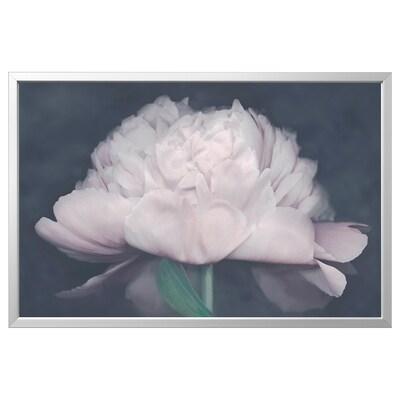 BJÖRKSTA kép kerettel Virágzás/alumínium színű 118 cm 78 cm