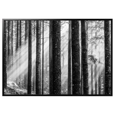 BJÖRKSTA kép kerettel Napsugarak/fekete 200 cm 140 cm