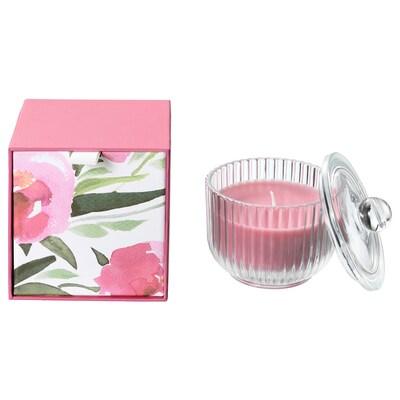 BLOMDOFT Illatosított gyertya üvegben, bazsarózsa/rózsaszín, 9 cm