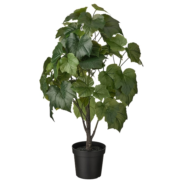 FEJKA Cserepes műnövény, bel/kültér Rozsdásszőrű díszszőlő, 15 cm