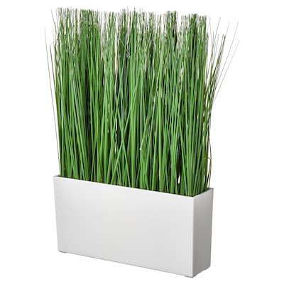 FEJKA Cserepes műnövény+kaspó, bel/kültér fű