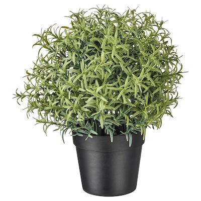 FEJKA Cserepes műnövény, rozmaring, 9 cm
