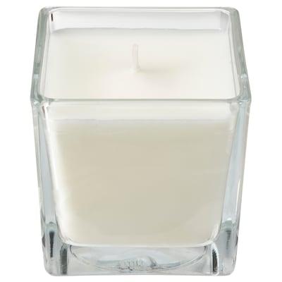 FRAMFÄRD Illatosított gyertya üvegben, Frissen mosott ruha/fehér, 8 cm