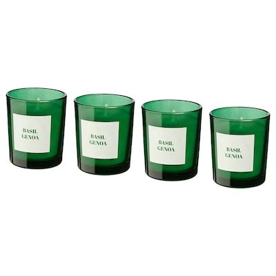RINGLAD Illatosított gyertya üvegben, bazsalikom/zöld