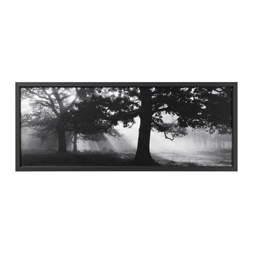 BJÖRKSTA Picture with frame Meadow dream ii/black 140 x 56 cm - IKEA
