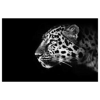 BJÖRKSTA Picture, cheetah, 118x78 cm