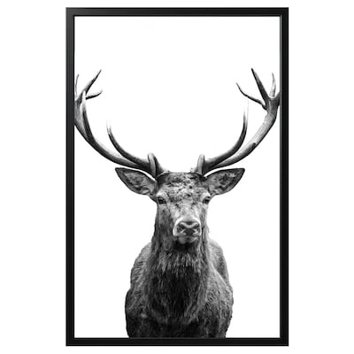 BJÖRKSTA picture with frame Horns/black 118 cm 78 cm
