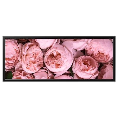 BJÖRKSTA picture with frame Pink peony/black 140 cm 56 cm