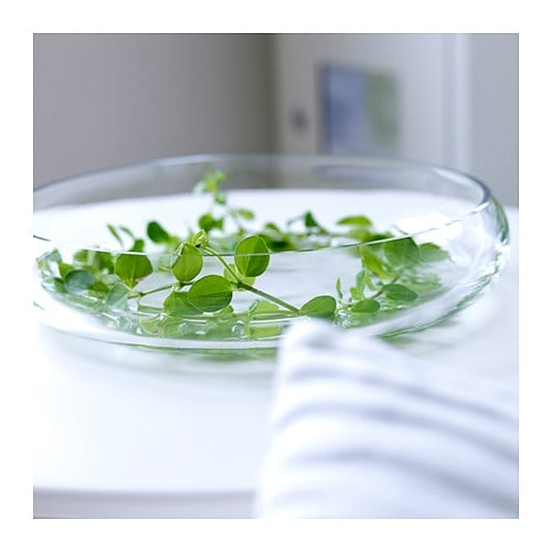 BLOMSTER Bowl Clear glass 26 cm  IKEA