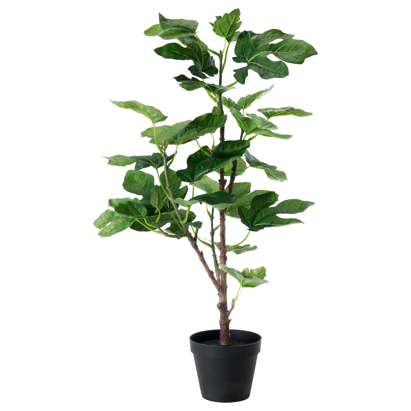 Fejka artificial potted plant fig 12 cm ikea for Ikea plantes