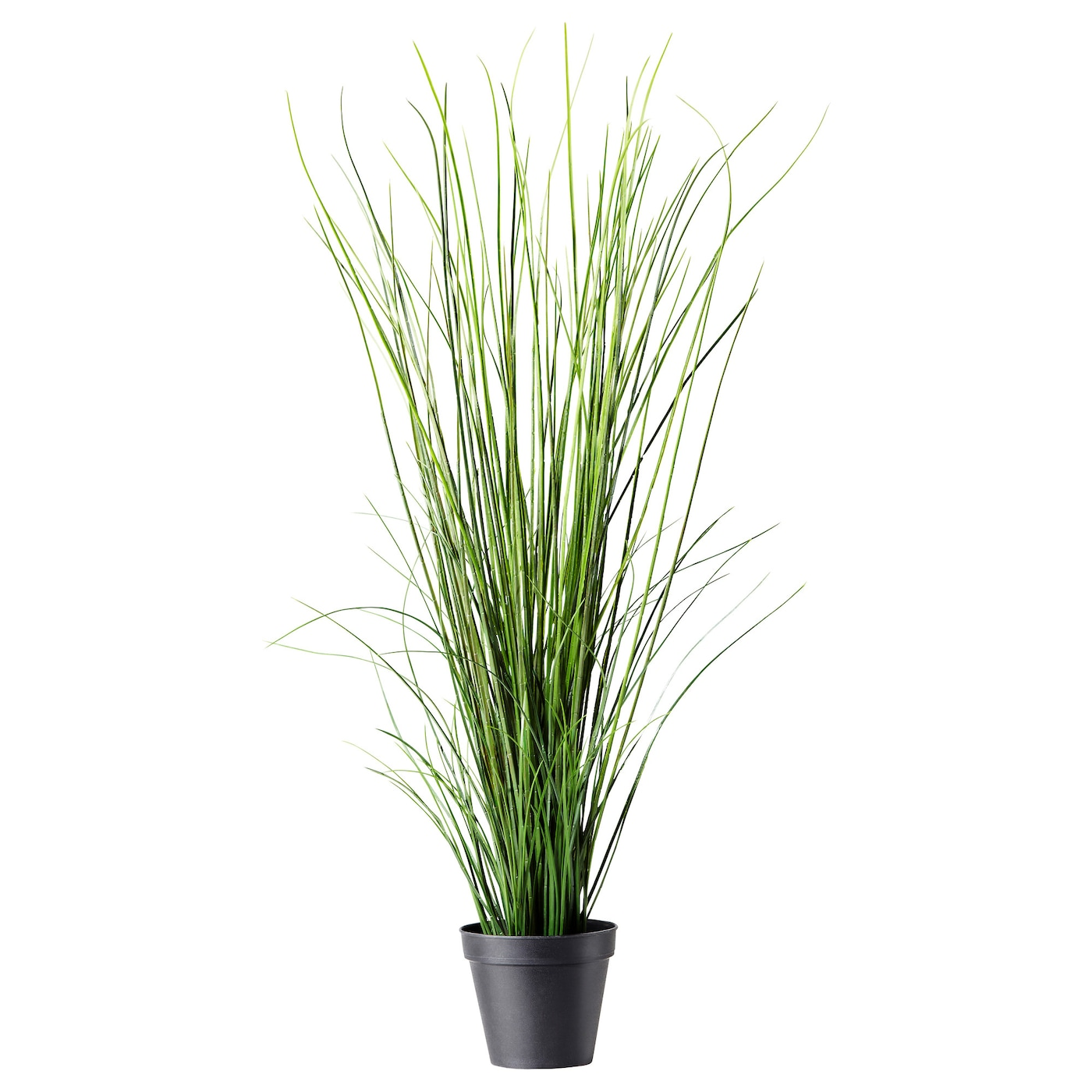 Fejka artificial potted plant grass 17 cm ikea for Ikea plantes