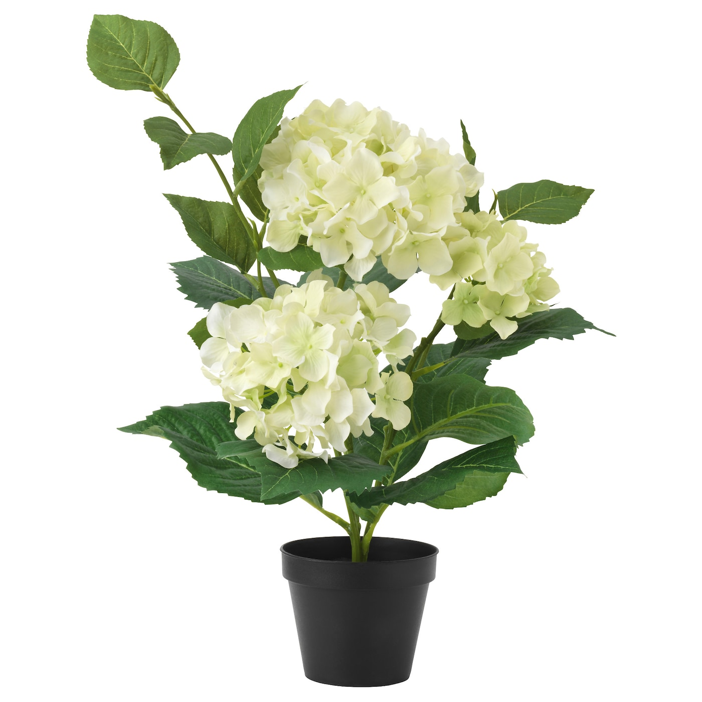 fejka artificial potted plant hydrangea light green 12 cm ikea. Black Bedroom Furniture Sets. Home Design Ideas