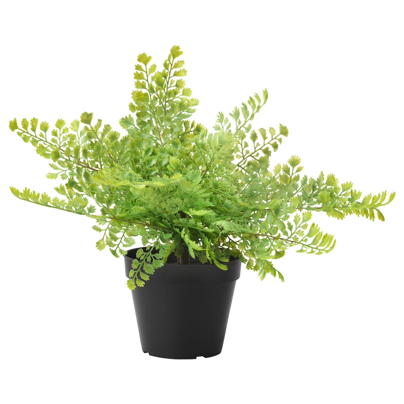 Fejka artificial potted plant in outdoor maidenhair fern for Ikea plantes