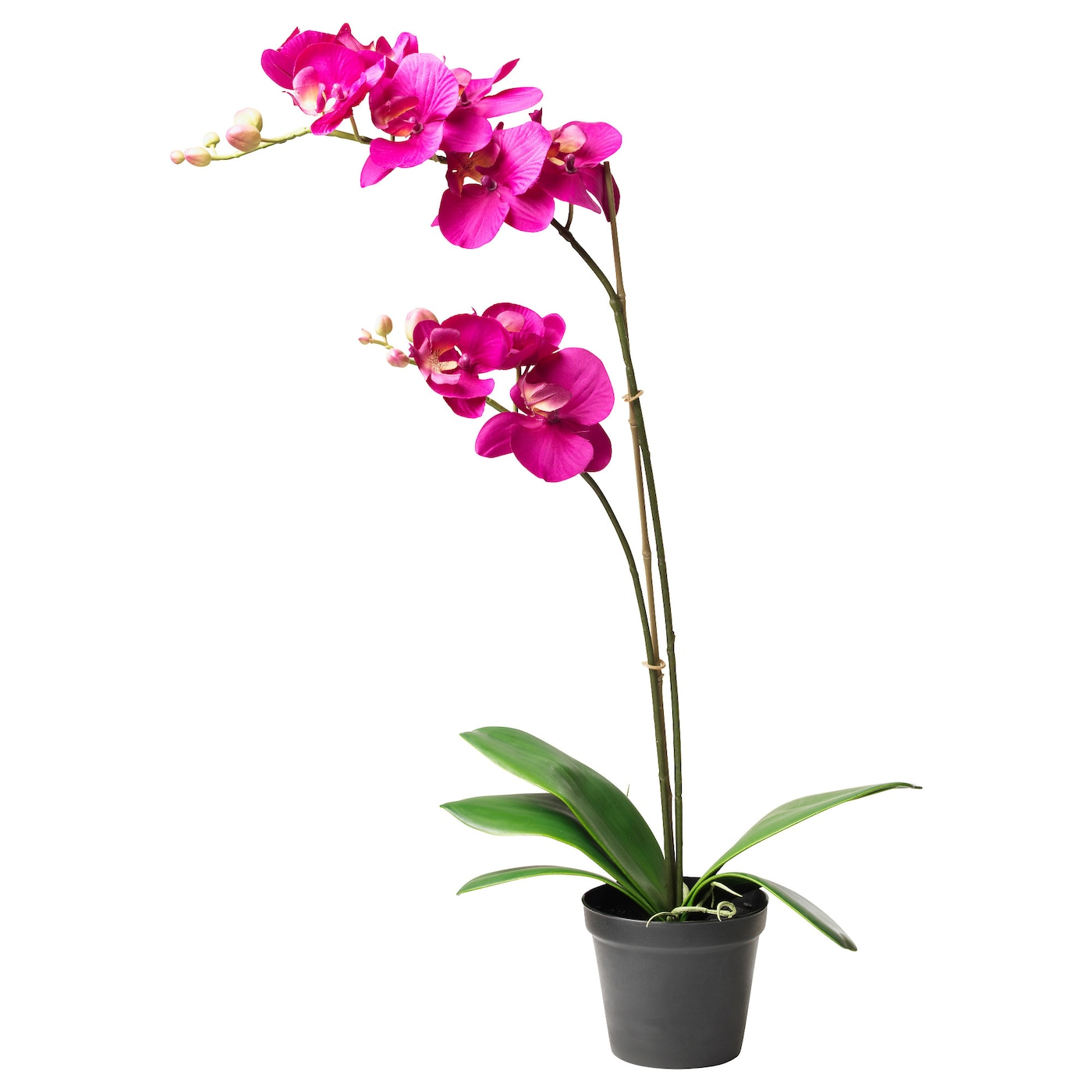 Fejka artificial potted plant orchid dark lilac 12 cm ikea for Artificial plants for decoration