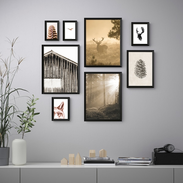 KNOPPÄNG Frame with poster, set of 8, In the woods