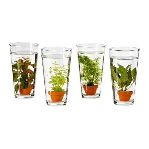 Ikea Vattenrall Water Plant Can Be Used For Aquariums And Vases