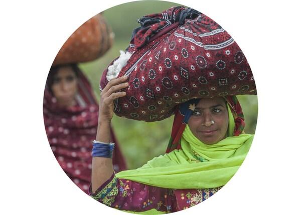 책임감 있게 재배된 갓 딴 목화를 천 가방에 담아 머리에 이고 운반하는 여성들의 모습