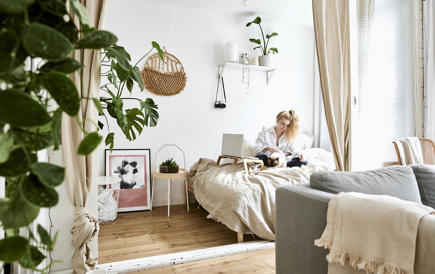 1-værelses opholds- og soveområde med sofa, seng og gardiner med gardinbånd.