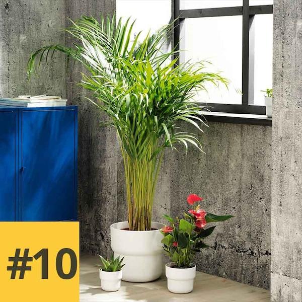 10 inspirierende Ideen für deine eigene Oase #10