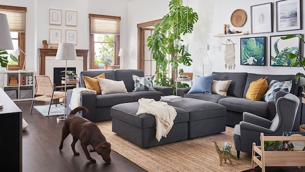 A dog sniffing at the floor, in a bright living room with dark grey KIVIK sofas and ottomans, a child's STRANDMON armchair, plants, and wall art.
