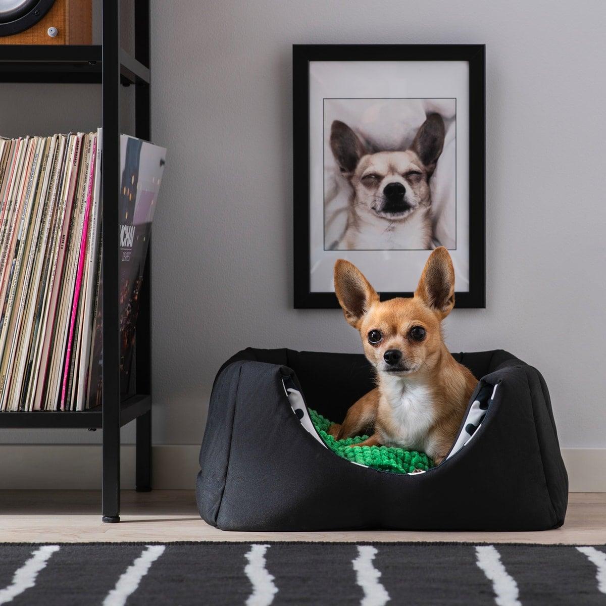 Para Accesorios Ikea Online Mascotas Compra qzpMSUVG